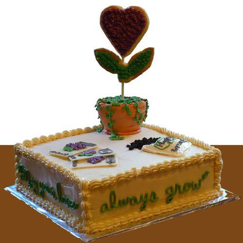 Bridal shower cake1